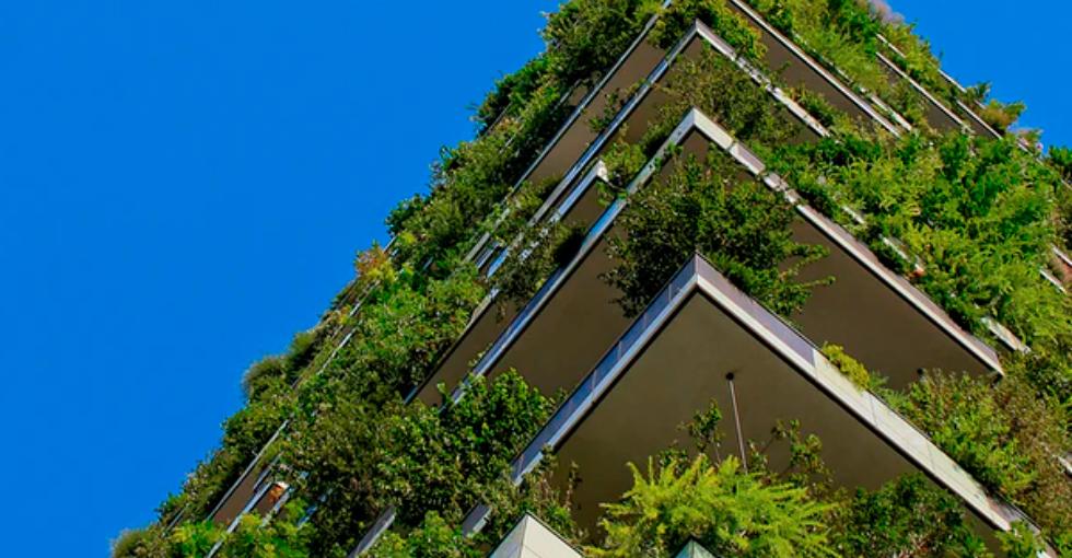 Sostenibilidad En El Mercado Inmobiliario